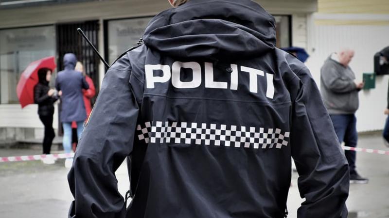 Policja zatrzymała sprawcę ataku w Kongsbergu i trwają jego przesłuchania, źródło: pxfuel