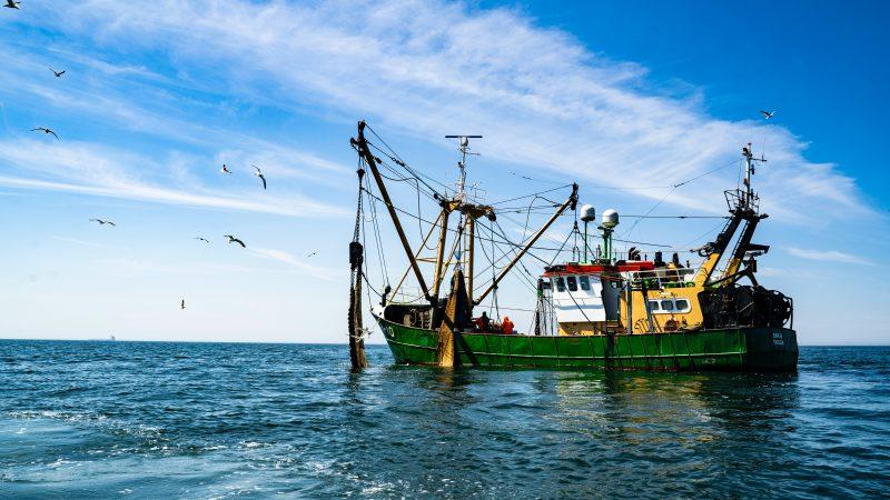 Francusko-brytyjski spór o rybołówstwo ciągniesięod brexitu (Photo by Paul Einerhand on Unsplash)