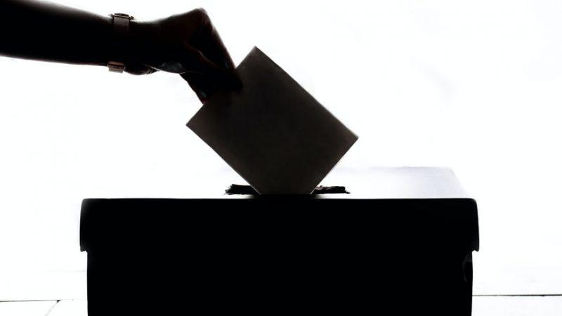 Estonia, wybory, lokalne, samorządowe, partia,centrum, partia, reform, EKRE